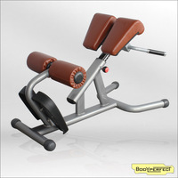 BFT-3039 Roman Chair used weight bench for sale