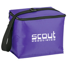 insulated cooler bag / coolers bag promotional / 6 cans beer cola cooler bag
