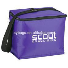 insulated cooler bag / coolers bag promotional / 6 cans beer cola cooler bag