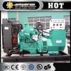 Power supply 5.5kva Liquefied petroleum gas Generator for sale