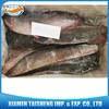 Frozen Catfish Exporters