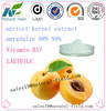 Health care supplement bitter apricot seed amygdalin powder vitamin b17
