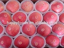 Fresh apple bulk fresh apples blackberry z10