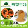 De alta calidad y precio más bajo 100% natrual orgánica papaya en polvo