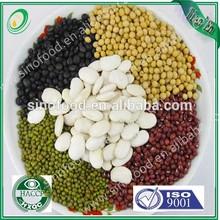 White Kidney Beans(Japanese / Medium / Spanish / Navy/Alubia/large/long Type and size)