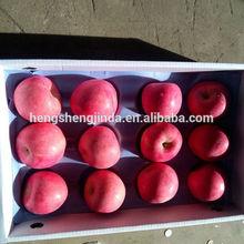 Chines Fresh Fuji Apple/Organic Fuji Apples Exporter In China