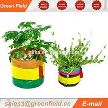 Beautiful canvas grow bag,durable canvas grow bag
