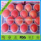 2014 New Corp China Red Apple Fresh Fuji Apple From China