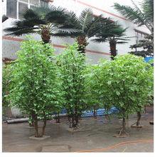 Gros bonsaï live ficus arbre artificiel bonsaï de banian