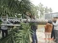 artificial árvore de pólo e palmeira artificial