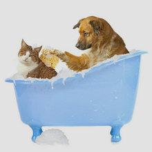 private label pet shampoo