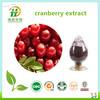 Factory supply Cranberries Powder, Cranberries Fruit Powder, Cranberries Juice Powder