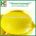 boa qualidade chinês fresco de limão