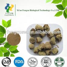 High quality guarana seed extract & guarana seed extract powder 10%