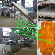 raisin processing machine/dried fruit washing machine/dried apricot cleaning machine