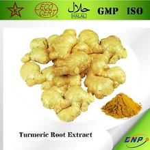 BNP Supply High Quality Turmeric Root Extract Rich in Curcumin Curcuminoids