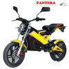 PT-E001 Portable Cheap New Model 1500W EEC Chinese Supplier Foldable Electric Mini Motorcycle