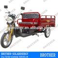 1200w 15 tubos eletric triciclo de carga a la venta