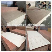 1220x2440mm WBP Glue Saple Plywood for Construction (LINYI MANUFACTURER)
