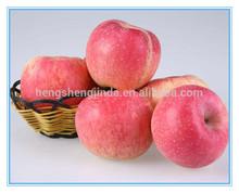 Chinois frais sucre Apple pour vente