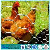 white chicken wire netting hexagonal wire mesh/chicken wire mesh