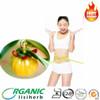 Lose weight product Garcinia Cambogia Extract 50% 60% 95% HCA