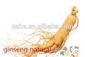 lucha contra envejecimiento longevidad 100 % de extracto de raíz de ginseng medicina herbal / alimentos que baja presión arterial con extracto de raíz de ginseng