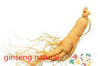Anti-ageing longevity 100% herbal medicine ginseng root extract / Food that lowers blood pressure ginseng root extract