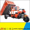 Chinese Motorized Cargo Three Wheel Motorcycle