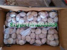 wholesale garlic price fresh garlic specification