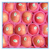 Red Fuji Apple Fresh Fruit Wholesale