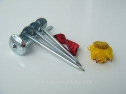 umbrella nail/ roofing umbrella nail /high quality nails
