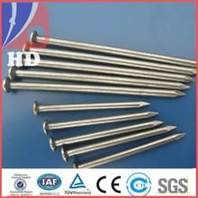 iron nail /common nail factory