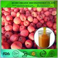 Orgánicos jugo de manzana concentrado/fresco extracto de manzana verde/naturaleza puro jugo de manzana