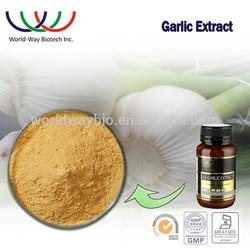free sample alliiin,HACCP KOSHER FDA garlic extract,HPLC 3% alliin aged garlic extract