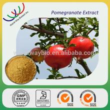 free sample polyphenol,HACCP KOSHER FDA pomegranate extract,40% pomegranate leaf extract powder