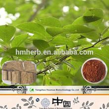Chinese Herbal Tea Material Cortex Eucommia Extract