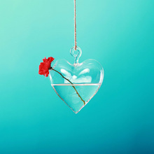 glass small terrarium for hanging in heart shape