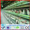 High quality egg laying chicken cage, egg collection chicken farming equipment (ISO9001:2008 Certificated)