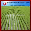 machine à planter du riz semis hydraulique de pointe