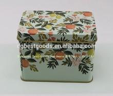 Exquisite rectangular decorative metal tin box