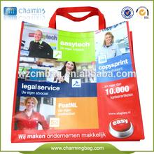 fashion lady handbag wholesale non woven shopping bag
