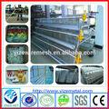 Galvanizado de alta calidad de aves de jaula de trampa( fabricante profesional)