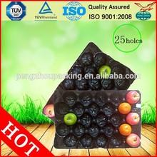 disposable fruit serving plastic trays