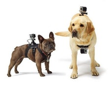 Go pro accessories: Go pro Dog Fetch Harness Chest Strap Belt Mount for Go Pro He ro 4/3+/3/2/1