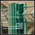 Prezzo a buon mercato pvc rivestito in metallo saldato rete metallica da giardino cancelli e recinzione design(Cina anping fabbrica)