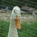 Zoo usato scherma voliera ( prezzo di fabbrica )