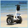 Водонепроницаемый для взрослых два колеса электрический мотоцикл с низкой ценой