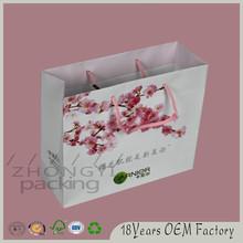 Advertising art paper bag, creative paper bag,promotional bag