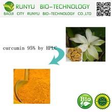 Organic Natural Turmeric Root Extract 95% Curcumin